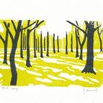 Houtsnede van een impressie van Licht in het bos gemaakt in 2007