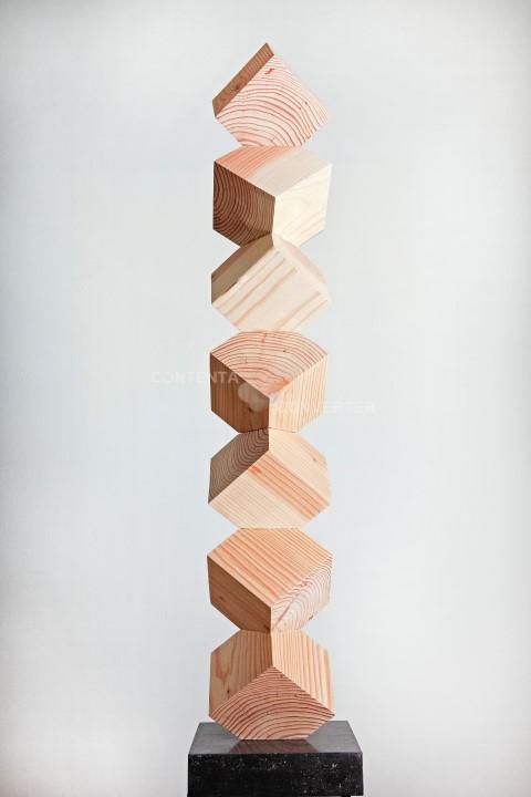 Chaotische symmetrie - douglas hout - hoogte 122cm